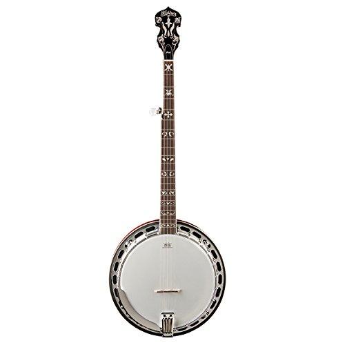 Washburn  B16K Banjo (5 String)