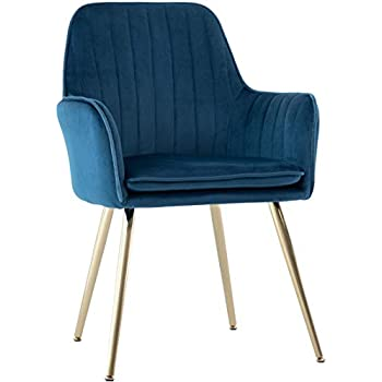 Fine Amazon Com Tov Furniture The Beatrix Collection Modern Pabps2019 Chair Design Images Pabps2019Com