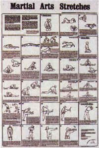 Martial Arts Stretches Poster Chart by Stretching