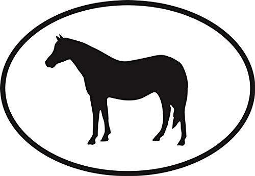 DG Graphics Magnet Welsh Pony Euro Oval Magnet Car Auto Fridge Locker Metal 5