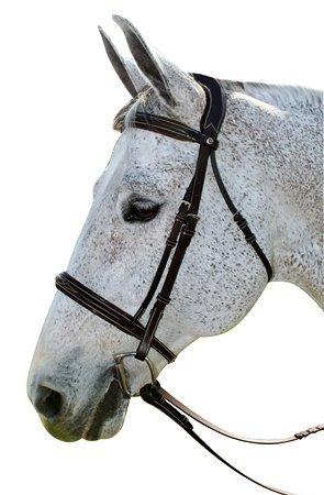 Henri De Rivel Pro Mono Crown Fancy Bridle Havana HORSE - Mens Bridle