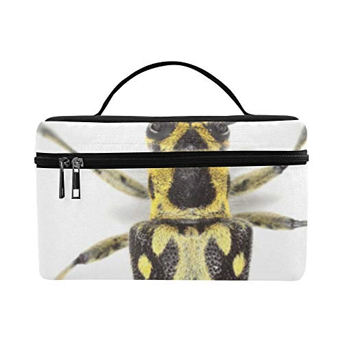 (Bento Lunch Sturdy Cosmetic Bags Colorful Gorgeous Small Beetle Large Lunch Bag Picnic Makeup Organizer Outdoor For Kids Tote)
