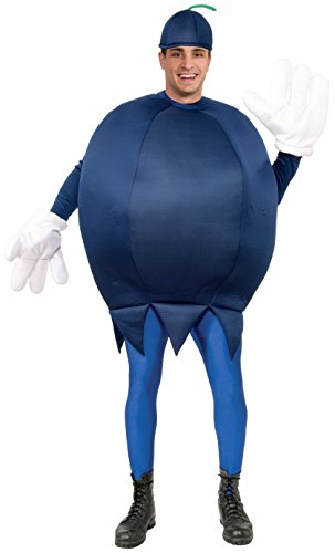 Forum Novelties Blueberry Costume, Blue, Standard for $<!--$30.07-->