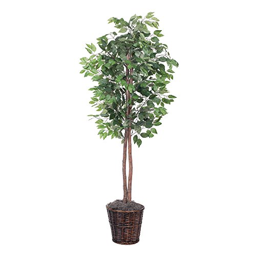 Vickerman 6-Feet Artificial Ficus Tree in Decorative Brown Rattan Basket