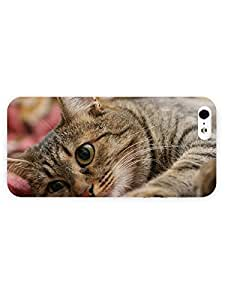 3d Full Wrap Case For Iphone 4/4S Cover Animal Cat On Striped Blanket