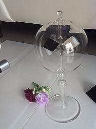 GUHOFIND Radiometer Glass Light Mill Solar Power Be a Little Einstein