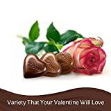 DOVE Valentines Assorted Chocolate Candy Heart Gift Box 8.13-Ounce Tin