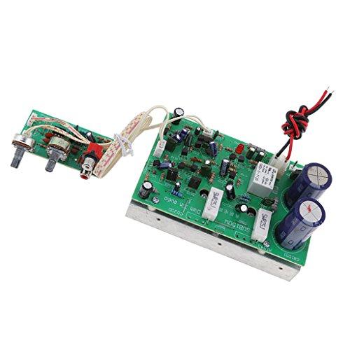 Baoblaze 150W Mono Channel Amplifier Class D HIFI Power Amp Board Amplifier Module New