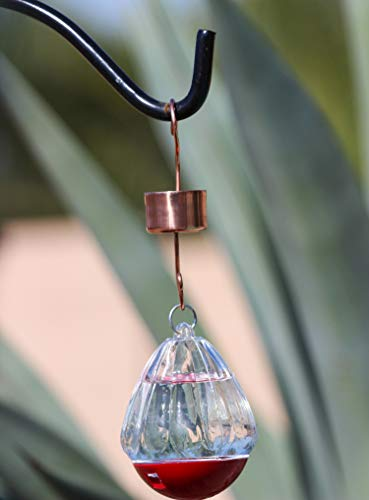 Mejor anti Ant Trap & Moat para comederos de colibrís - Skinny Ant ...