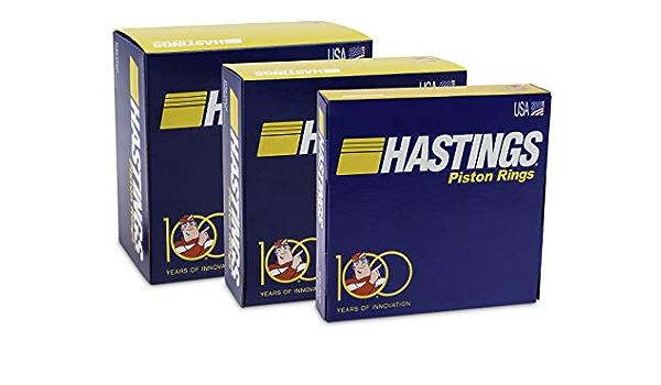 Hastings 2C696S060 Single Cylinder Piston Ring Set