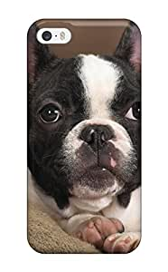 High Impact Dirt/shock Proof Case Cover For Iphone 5/5s (boston Terrier Dog )