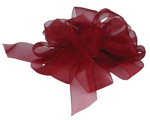Sheer Offray - Offray Berwick LLC 424148 Berwick Simply Sheer Asiana Ribbon - 5/8