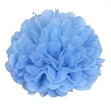 "Generic Pack of 10 Turquoise blue Wedding Decorative Props Tissue Paper Pompoms Pom Poms Balls Wedding Party Home Decoration 10"" (25cm)"