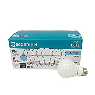 Ecosmart LED A19 Light bulb, 60w Equivalent (A19 Daylight)