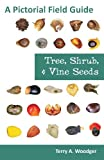 Tree, Shrub, and Vine Seeds, Terry A. Woodger, 1612330444