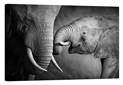 LightFairy Glow in The Dark Canvas Painting - Stretched and Framed Giclee Wall Art Print - Animals Nature Baby Elephant - Master Bedroom Living Room Large Décor - 46 x 32 inch