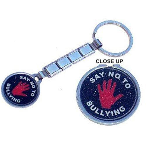TUCCI CHARMS SAY NO TO BULLYING Italian Charm Keychain