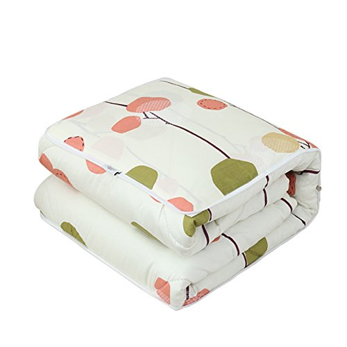 - MAFYU Summer Blanket,Afternoon Nap Pillows Quilt Car Pillow is Foldable Blanket,E,5050Cm Pillow
