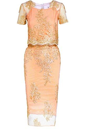 JeVenis Women's Embroidered Dress Lace Cocktail Dress Crystal Sequin Embellished Fringed Dress -