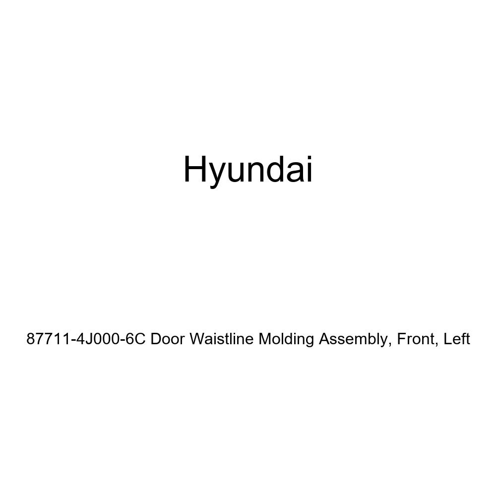 Genuine Hyundai 87711-4J000-6C Door Waistline Molding Assembly Left Front