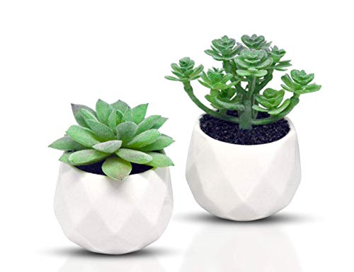 - Leafresh Decorative Artificial Plants Potted Mini Fake Succulent w/Modern White Ceramic Pots for Home Office, Set of 2 (Green - 1)