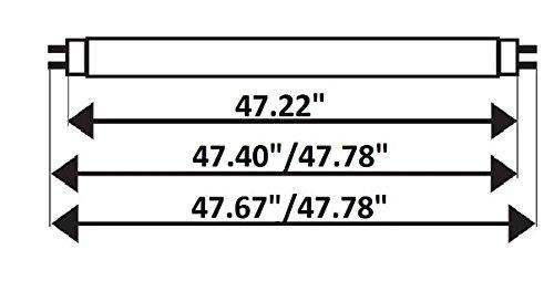 Pack of 8 F32T8/865 32 watt 48'' Straight F32 T8 Medium Bi-Pin (G13) Base, 6,500K Daylight Octron Fluorescent Tube Light Bulb by Sterl Lighting (Image #5)