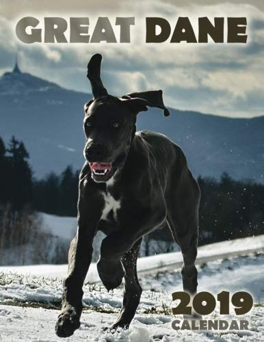 Great Dane 2019 Calendar