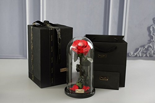 Beauty and The Beast Red Rose, Preserved Fresh Flower with Fallen Petals in a Glass Best Gifts for Lovers Box