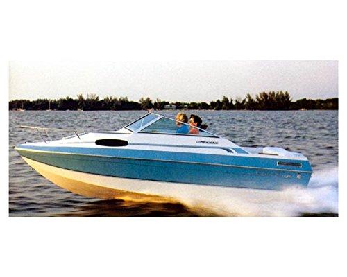 1988 Chris Craft 19 Scorpion Cuddy Cabin Power Boat Photo ()