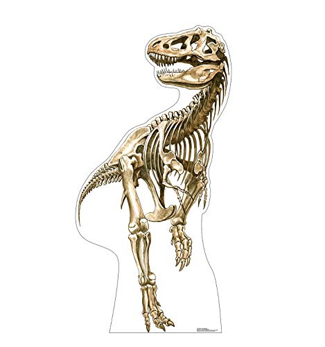 Advanced Graphics Tyrannosaurus Rex Skeleton Life Size Cardboard Cutout Standup