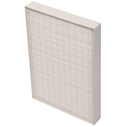 rue HEPA Filter (Small) - Design to Fit Whispure Air Purifier Model AP150 AP250, AP25030K, APR25130L, APR25530L, 10x11 inch ()