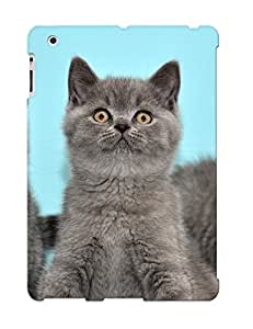 New Cute Funny Grey Kittens Case Cover/ Ipad 2/3/4 Case Cover For Lovers by supermalls