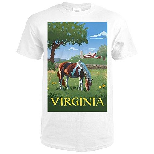 Virginia - Horse in Field (Premium White T-Shirt Medium)