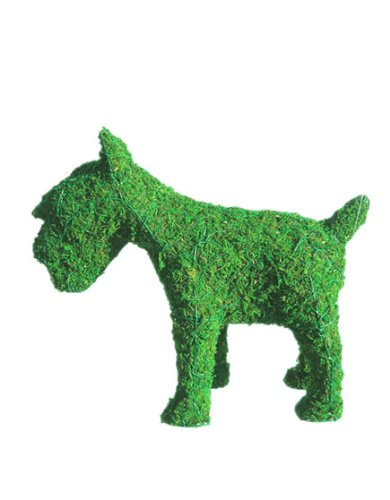 Schnauzer 12 inches high x 14 inches long x 6 inches wide w/ Moss Topiary Frame , Handmade Animal Decoration