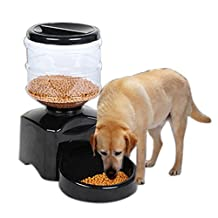 5.5 L Automatic Pet Feeder for Dogs & Cats, Programmable Timer, Food Station Dispenser Container, Record Your Voice, Control Portions and Feed Times (Black)