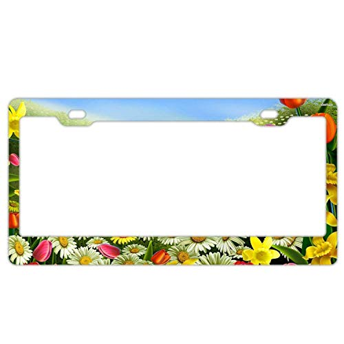 Cutadornsly Auto License Plate Frame License Plate Frame Standard Size US CAN Carplate Frame 12×6 inches - Daisy Tulip Daffodil Field