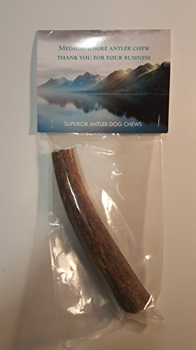 "1-Medium Elk Antler –Single Pack. All Natural Premium Grade A. Antler Chew. L=5-8"" Naturally shed, Hand-Picked, and Made in The USA. NO Odor, NO Mess. Guaranteed Satisfaction. for Dogs 20-45 LBS"
