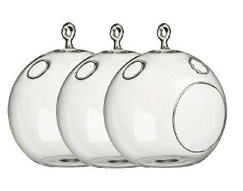 "3 Bulk 6"" Tall Large Round Glass Decorative Hanging Craft Balls / Terrarium (Decorative Terrarium)"