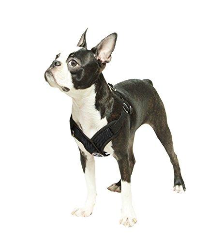 choke free dog harness medium - 3