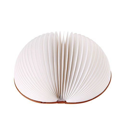 Rose Traditional Torchiere Lamp (USB Rechargeable LED Table Lamps, Folding Book Design Night Lights with Magnetic Book Cover, Awsome & Greative Gift For Friends/Children, Brown Semi-Circle Case)
