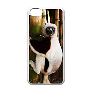 J-LV-F Print Lemur Pattern PC Hard Case for iPhone 5C