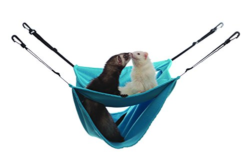 Marshall Pet Marshall Ferret Deluxe Leisure Lounge, Patte...