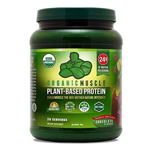 Organic Muscle brand Protein Powder, Chocolate