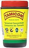 Tamicon Tamarind Paste 14 ounces