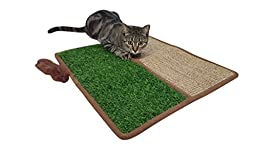 Pawfect Pets Premium Interactive Cat Scratch and Lounge Mat with Artificial Grass, Crinkle Sound and Feather Toy