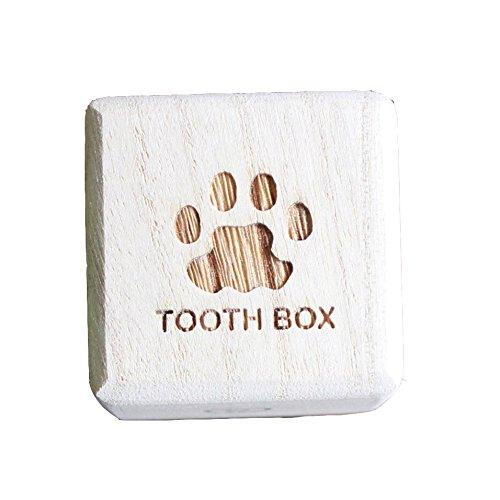 MUDORA run party 'Foot' IROHA Breast Tooth Fairy Box kiri Dog cat Child's Teeth Baby Gifts Present Baby Tooth Keepsake Box Made in Japan Wooden Boxes First Haircut Keepsake Teeth Box