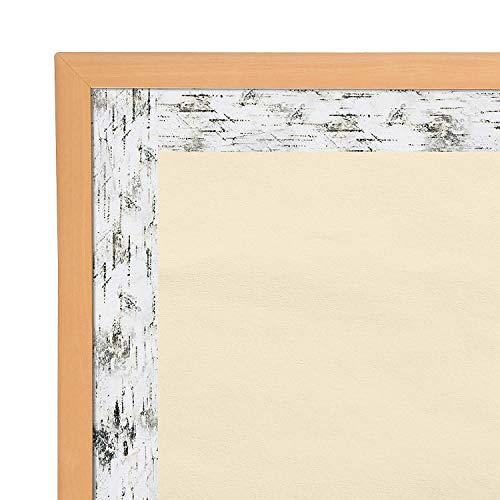 Fun Express - Sgs Birch Trees Bb Border - Educational - Classroom Decorations - Bulletin Board Decor - 12 Pieces