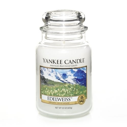 Yankee Candle 22 oz Large Holiday Jar Candle EDELWEISS (Jar 22 Holiday Ounce)