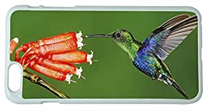 Generic Beautiful Hummingbird Peck Flower Hard Case for iPhone 6 Plus White