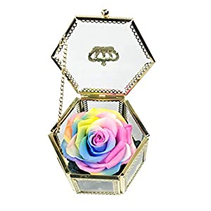 Vicanba Immortal Flower - Flower Rose Upscale Immortal Flowers Gifts Women Her Girls Sister Mothers Day Valentines - Mothers Artificial Rose Women Valentines Immortal Flower Upscale Dried Flowers 100